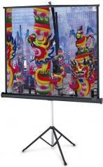 Projecta  Professional 152x152 см